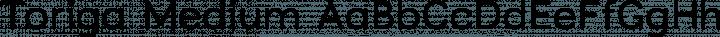 Toriga Medium free font