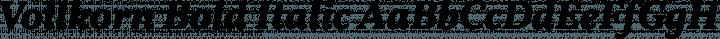 Vollkorn Bold Italic free font