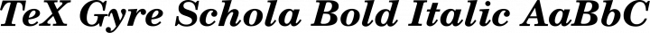 TeX Gyre Schola Bold Italic free font
