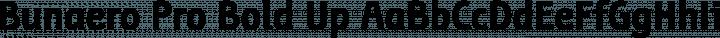 Bunaero Pro Bold Up free font