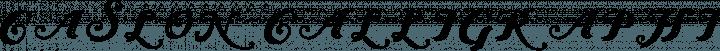Caslon Calligraphic Initials Regular free font