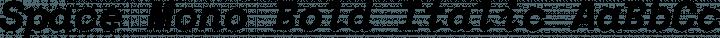 Space Mono Bold Italic free font