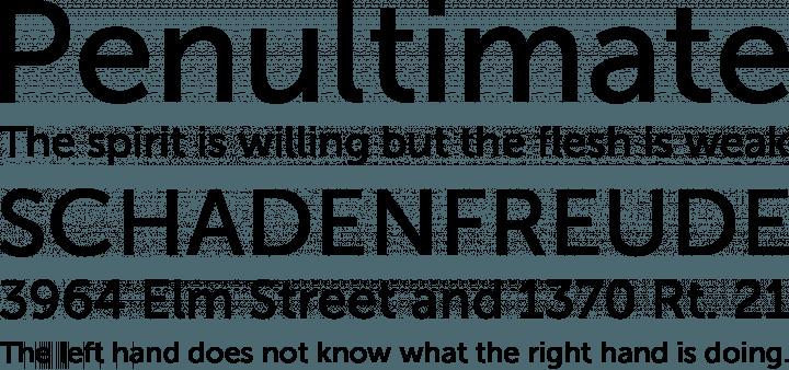download font museo sans