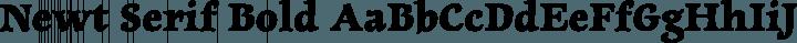 Newt Serif Bold free font