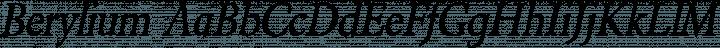 Berylium font family by Larabie Fonts