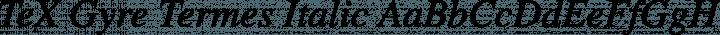 TeX Gyre Termes Italic free font